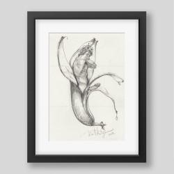 """""""King of bananas"""" print"""